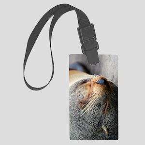 South American Fur Seal iPad Fol Large Luggage Tag