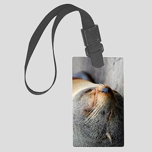 South American Fur Seal iPad Min Large Luggage Tag