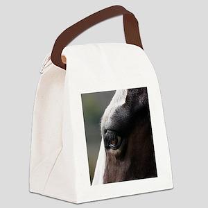 Apaches Eyelashes Canvas Lunch Bag