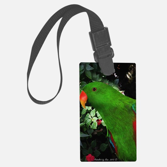 Eclectus Parrot Luggage Tag