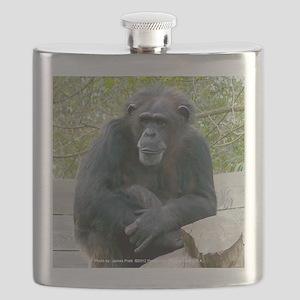 Sitting Ape Flask