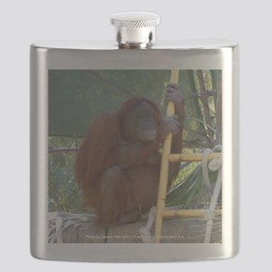 Lonely Orangutan Flask