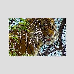 Tree Tiger Rectangle Magnet