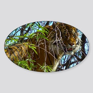 Tree Tiger Sticker (Oval)