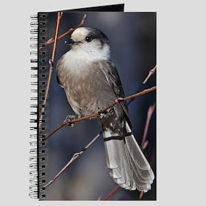 temp_ipad2_folio_cover Journal