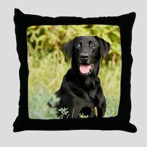 10oct-lindy-090312_0512 Throw Pillow