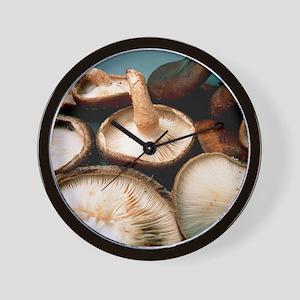 View of harvested shiitake mushrooms Wall Clock