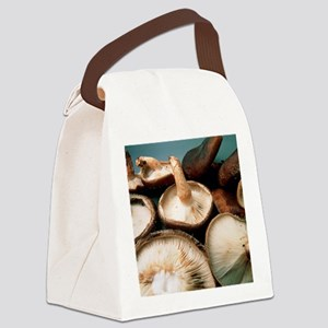 View of harvested shiitake mushro Canvas Lunch Bag