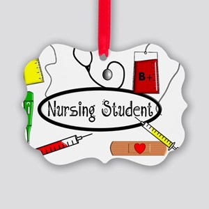 Nursing STudent Pillow Picture Ornament