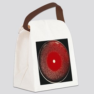 Whooping cough antibiotic researc Canvas Lunch Bag
