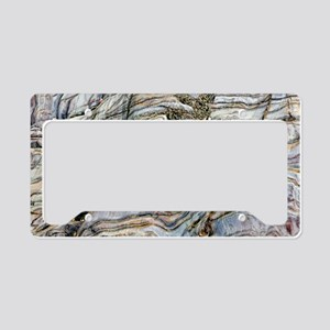 Coloured coastal rock License Plate Holder