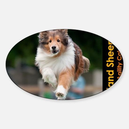 Shetland Sheepdog Agility Calendar Sticker (Oval)