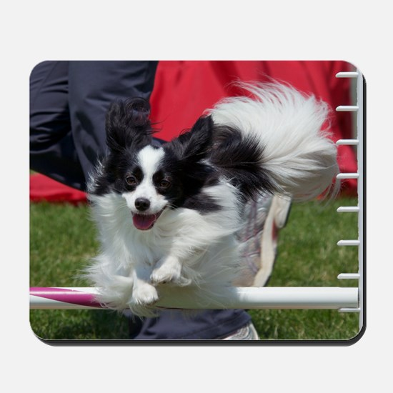 Papillon Surf Mousepad