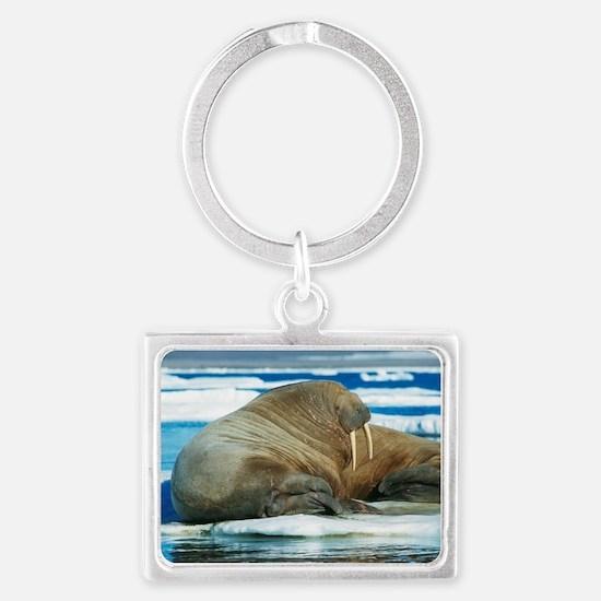 Atlantic walrus Landscape Keychain