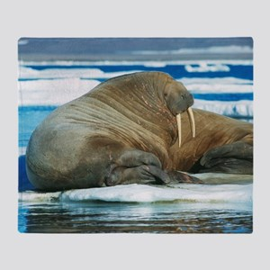 Atlantic walrus Throw Blanket