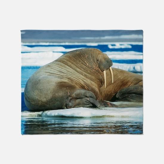 Atlantic walrus Throw Blanket