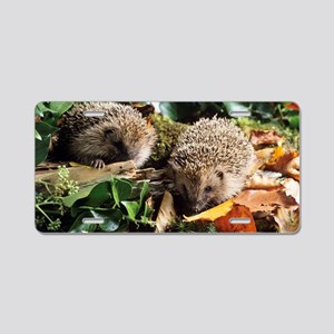 Baby hedgehogs Aluminum License Plate