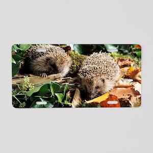 Baby hedgehogs Aluminum License Plate