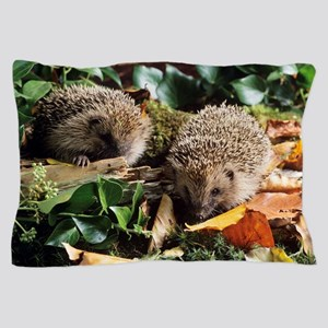 Baby hedgehogs Pillow Case