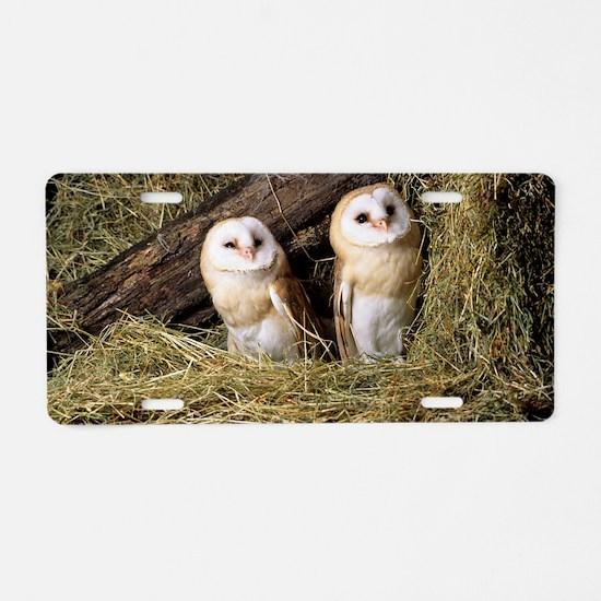 Barn owls Aluminum License Plate