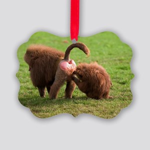 Baboons grooming Picture Ornament