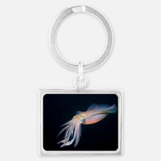 Bigfin reef squid Landscape Keychain