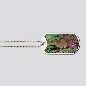 Bank vole Dog Tags