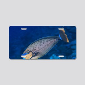 Bignose unicornfish Aluminum License Plate