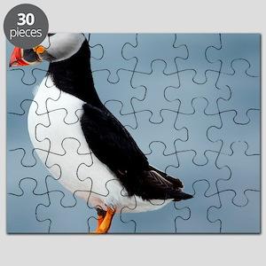 Atlantic puffin Puzzle