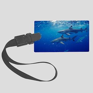 Blacktip reef sharks Large Luggage Tag
