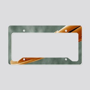 Bee sting License Plate Holder