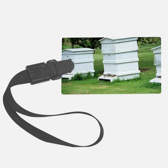 Beehive Luggage Tag