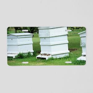 Beehive Aluminum License Plate