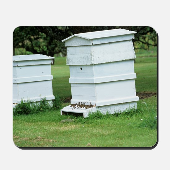 Beehive Mousepad
