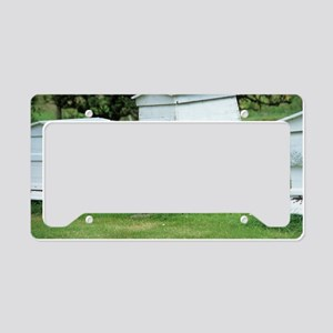 Beehive License Plate Holder