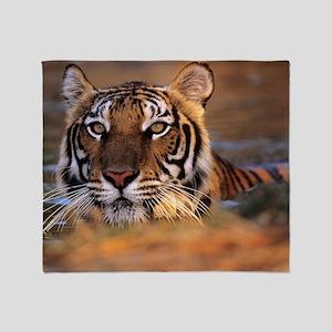 Bengal tiger (Panthera tigris) Throw Blanket