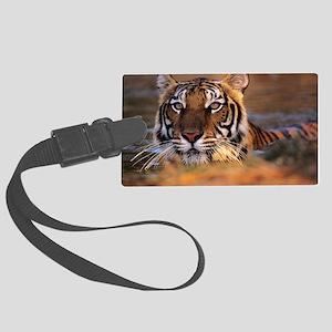 Bengal tiger (Panthera tigris) Large Luggage Tag