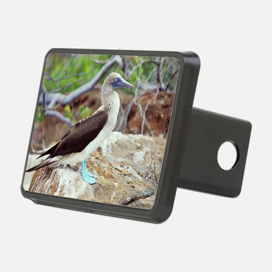 Blue-footed booby Hitch Cover