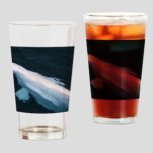Beluga whale bull Drinking Glass