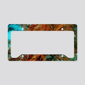 Blackspotted pufferfish License Plate Holder