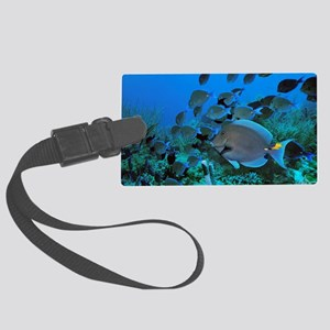 Blue tang surgeonfish Large Luggage Tag