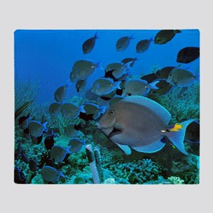 Blue tang surgeonfish Throw Blanket