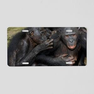 Bonobo apes grooming Aluminum License Plate