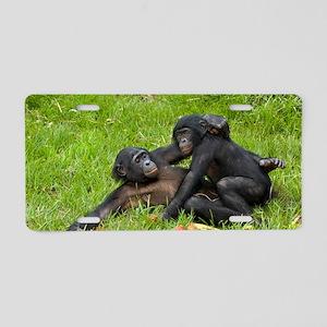Bonobo apes mating Aluminum License Plate