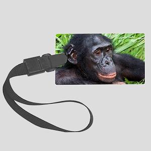Bonobo ape Large Luggage Tag