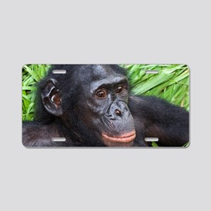 Bonobo ape Aluminum License Plate