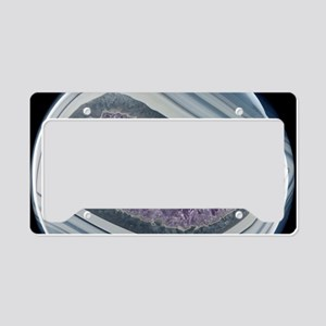 Amethyst filled geode License Plate Holder