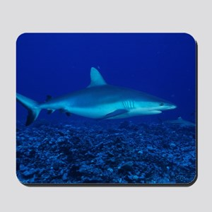 Bull shark Mousepad