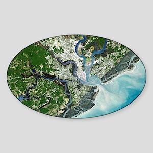 Charleston, South Carolina Sticker (Oval)