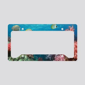 Butterflyfish over corals License Plate Holder